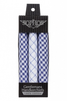 Blue and White Check Handkerchiefs